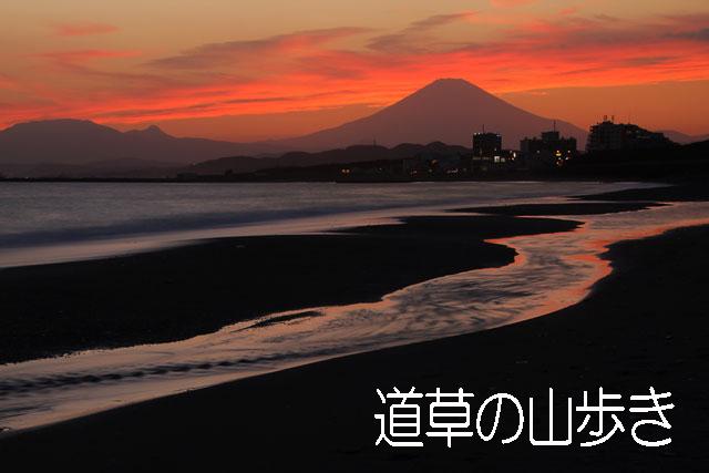 http://photohi.sakura.ne.jp/homepage/mitikusa.jpg